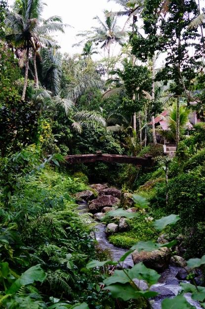 Gunung Kawi (35)