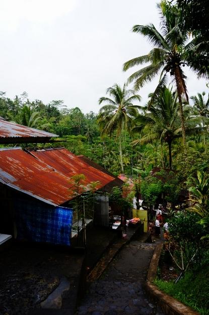 Gunung Kawi (7)