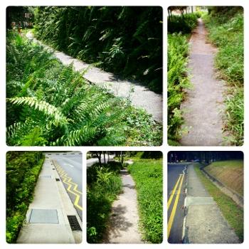 Singapore Sidewalks